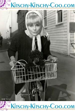 Elke Sommer pup 1963