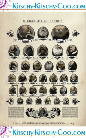 hierarchy of beards poster