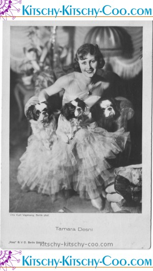 Tamara Desni dogs